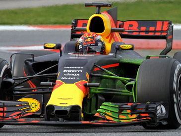 Max Verstappen photos